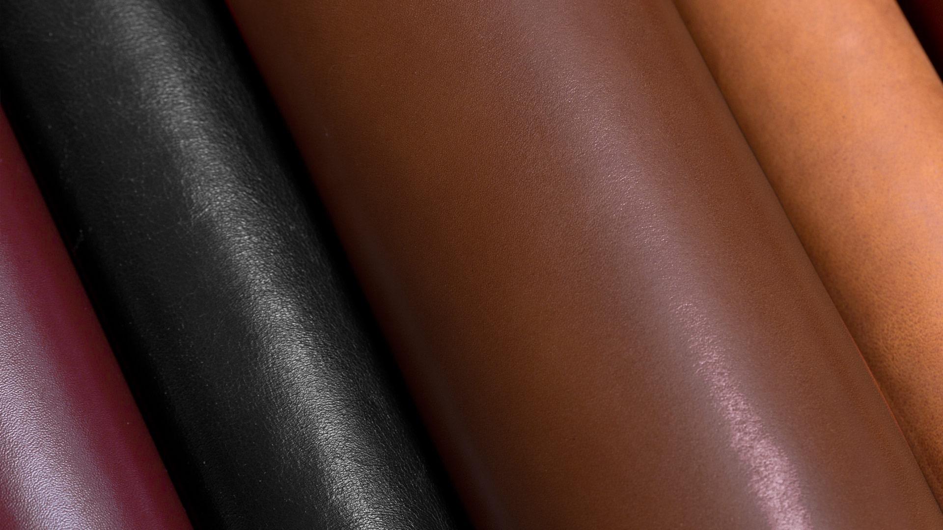 Différentes couleurs de cuir.